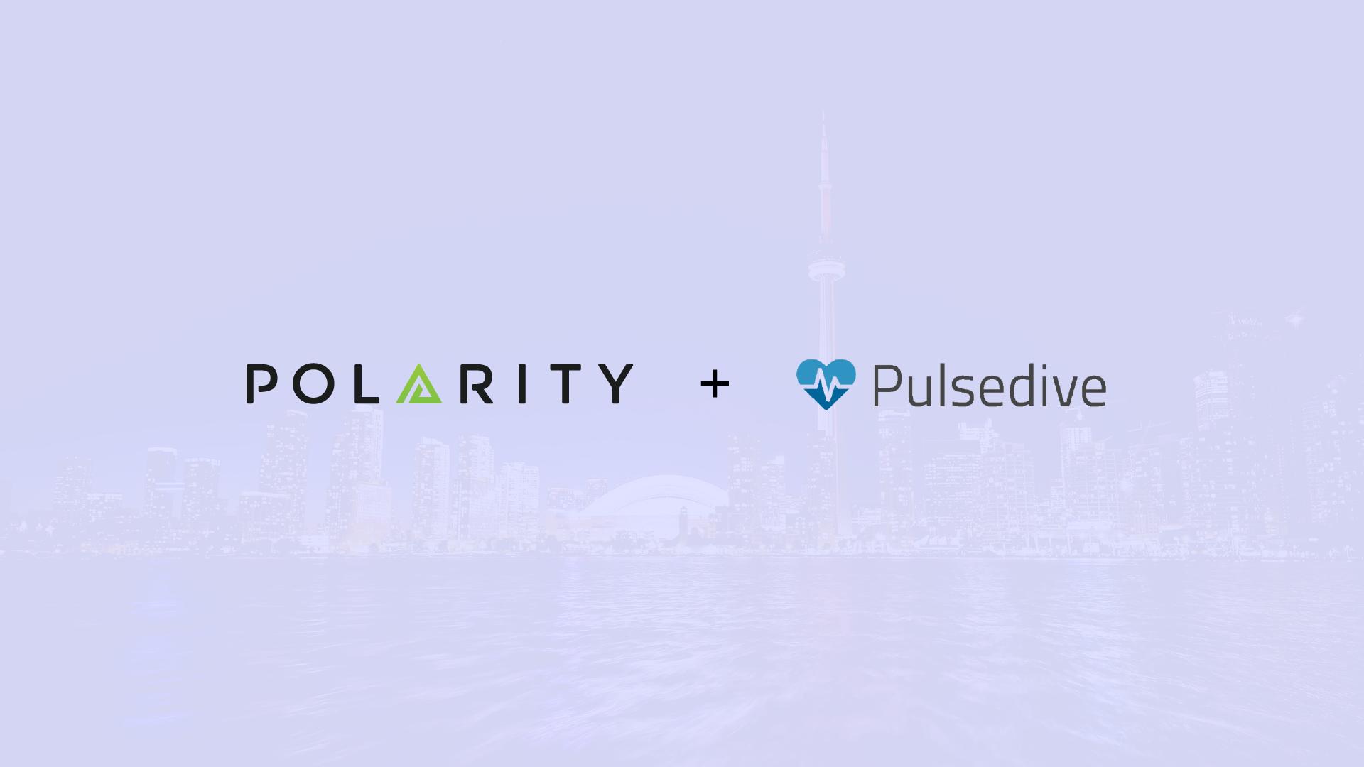 Polarity - Pulsedive Integration cover image